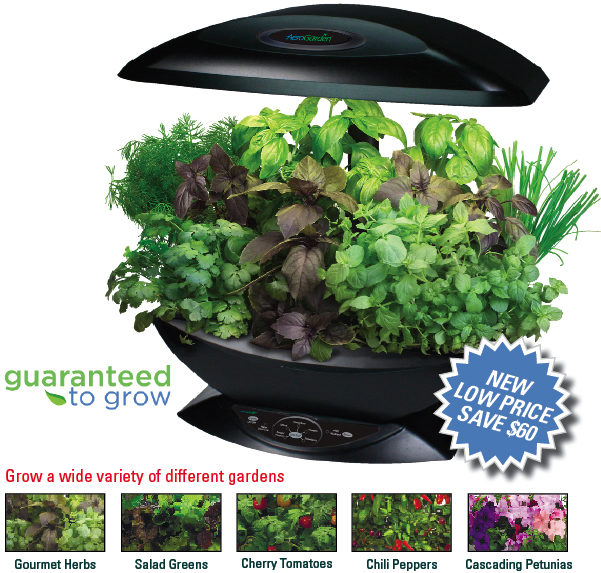 AeroGarden Reviews ProductReviewcomau