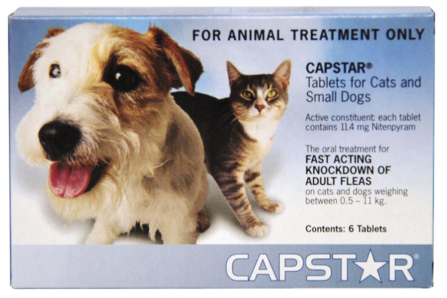 Is Capstar Tablets Good For Dogs