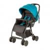 Childcare Echo Stroller