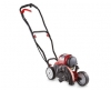 Aldi Whipper Snippers and Edgers