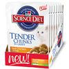 Hill's Science Diet Tender Chunks