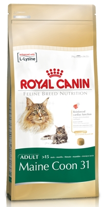 royal canin maine coon 31 reviews. Black Bedroom Furniture Sets. Home Design Ideas