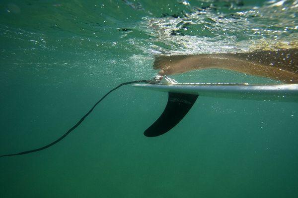 Shark Shield Surf7 Reviews Productreview Com Au