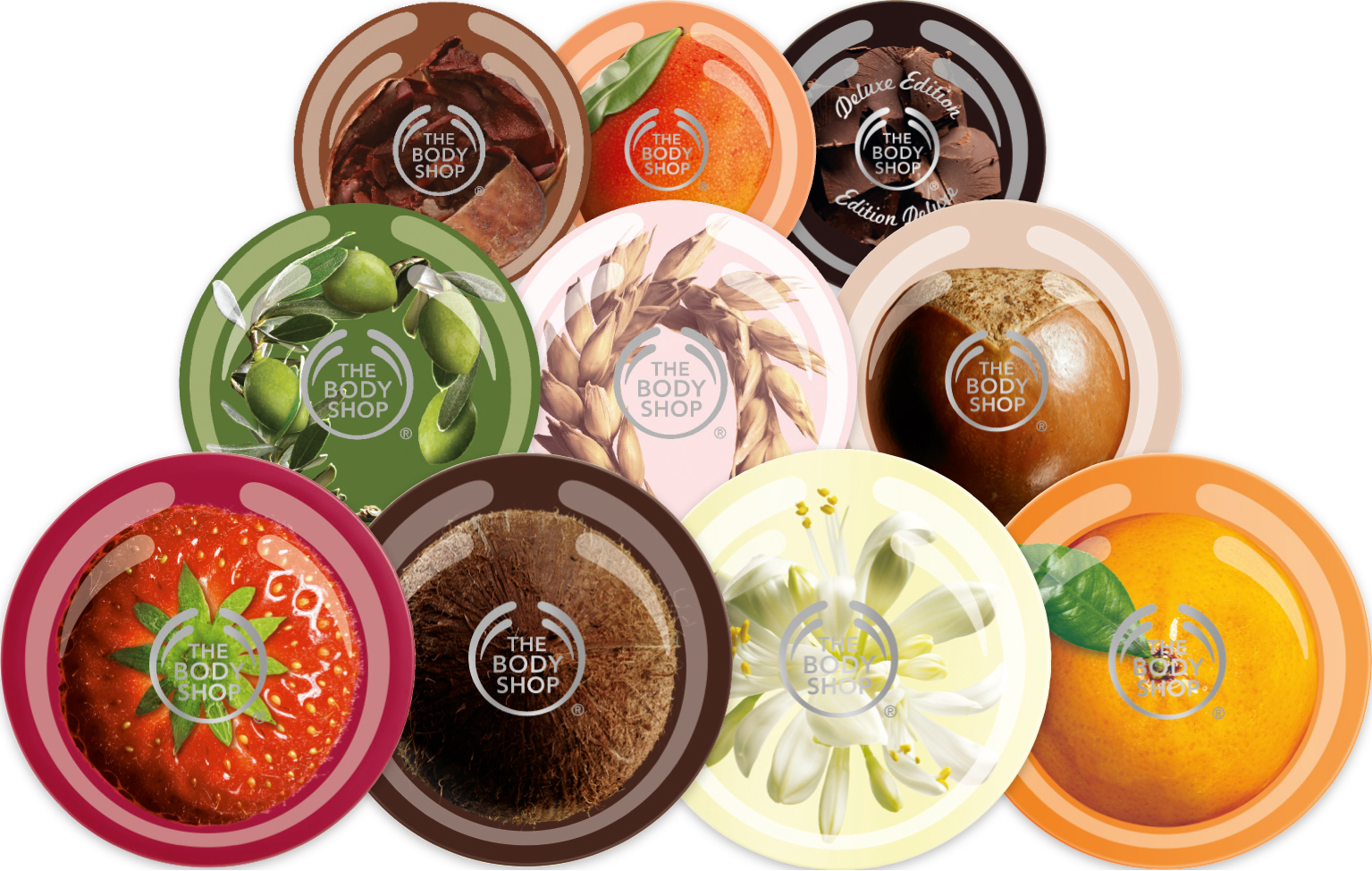 body shop finances 16082018 the body shop international plc watersmead business parklittlehampton,  gordon roddick became company chairperson and handled the finances as well,.