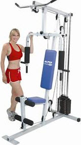 Healthstream Alpha Home Gym GE8020G Reviews ...