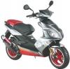 Xtreme Moto Predator 50