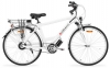 Aseako Electric Bike