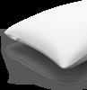 Koala Memory Pillow