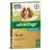 Bayer Advantage for Dogs