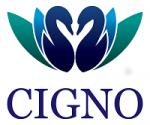 Cigno Loans