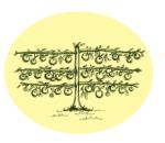 Yalca Fruit Trees