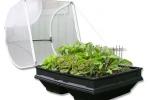 Vegepod Raised Garden Bed Kits